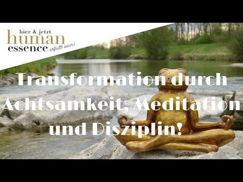 Hör auf zu jammern! Transformation durch Achtsamkeit, Meditation und Disziplin Webinar