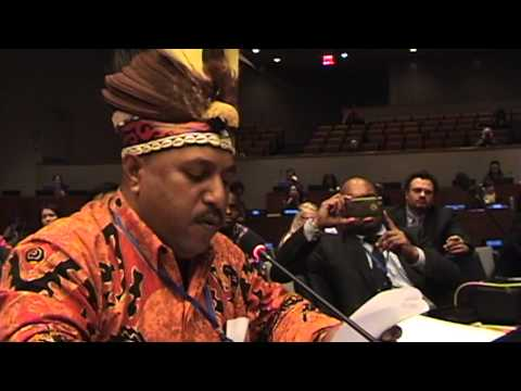 WEST PAPUA INTERVENTION AT UNITED NATIONS PERMANENT FORUM ON INDIGENOUS ISSUES, 2015  3