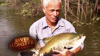 The Terrifying Tambaqui - River Monsters