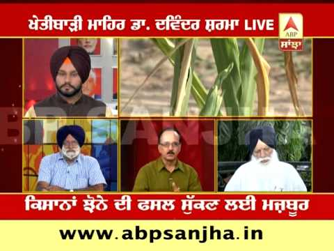 ABP SANJHA AGRICULTURE SPECIAL: Weak Monsoon & Drought hit crops, farmers despair