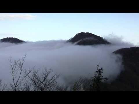 太平山【山毛櫸步道+翠峰湖+鐵杉林步道】