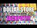 Dumpster Diving Jackpot At Dollar Store - Brand New Stuff!