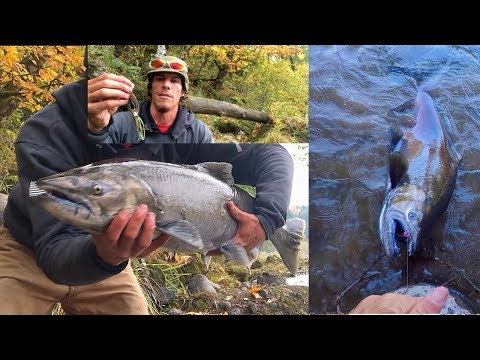Sandy River Fishing Spots | Sandy River Coho Chinook Steelhead | Oxbow Park Fishing