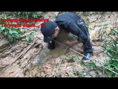 Mancing Lele Di Lobang2 Sungai Yang Mulai Kering thumbnail
