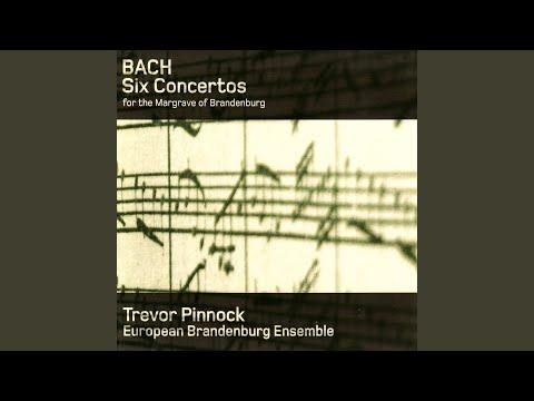 Brandenburg Concerto No. 3 in G Major, BWV 1048: I. [Allegro]