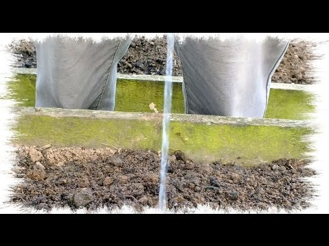 HGV How to Water your raised bed Onions, the easy way. Start to finish.