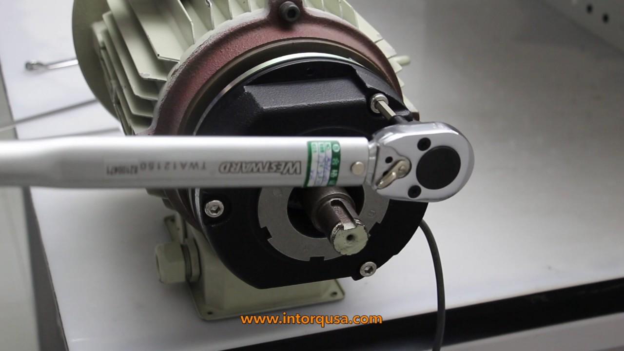205VDC INTORQ BFK458-08E SPRING APPLIED BRAKES 25W