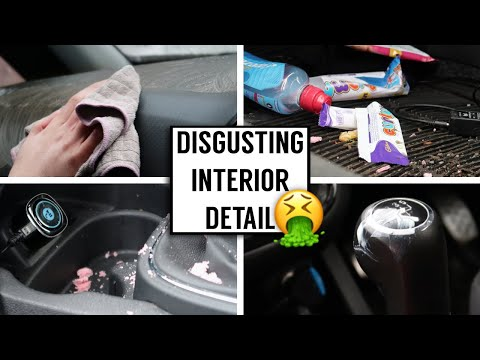 CLEANING THE DIRTIEST CAR INTERIOR!