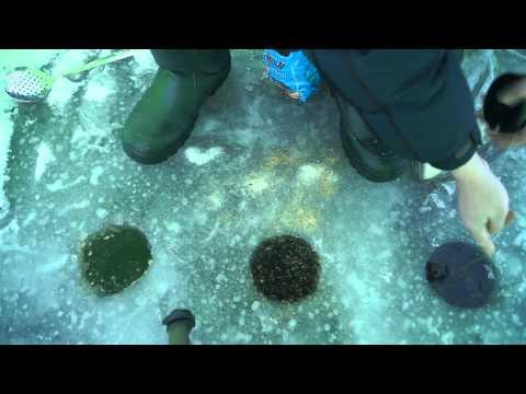 Рыбалка в Кушве открытие сезона как это было