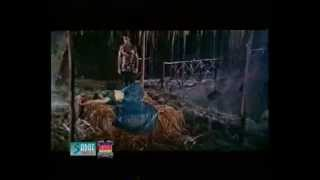 Wet Sexiest Song of Resham