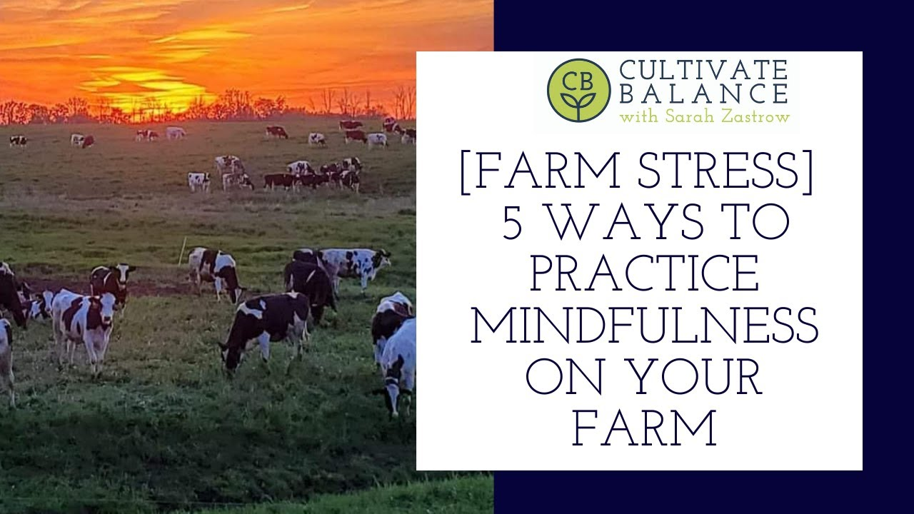 5 Ways to Practice Mindfulness on Your Farm