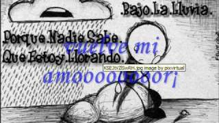 akon mr lonely version español