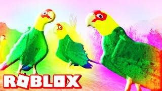 ROBLOX PARAKEET - Play As A Parrot (Cenozoic Survival)