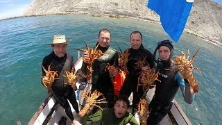 Spearfishing in NZ with William & Kane