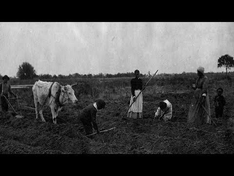 South Carolina: Rights to Ancestral Land