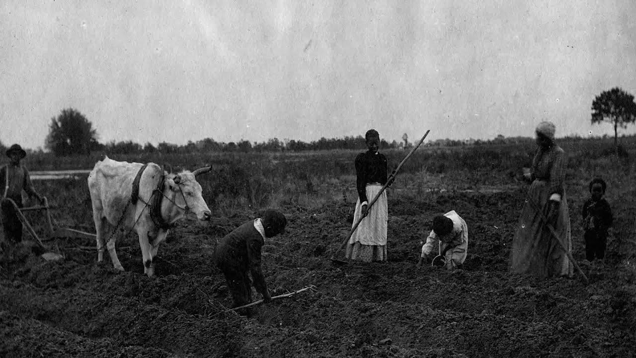 South Carolina: Rights to Ancestral Land