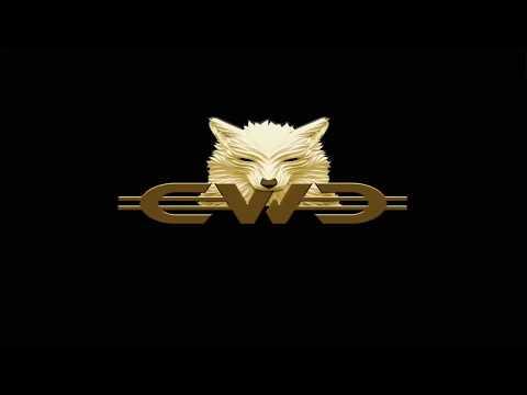 CWC  1 - Breve Explicação Básica Para Introdução Na Empresa Crowd Wolf Club (CWC)