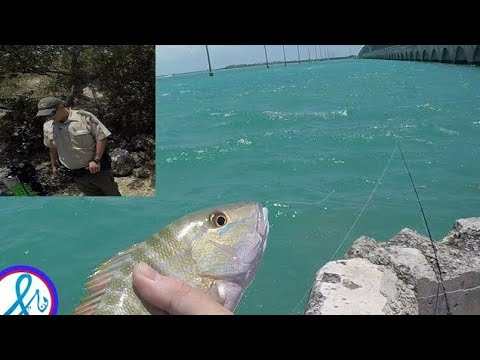 Fishing Florida Keys Got Stopped By POLICE Islamorada Mutton Snapper, Grouper, Jack!