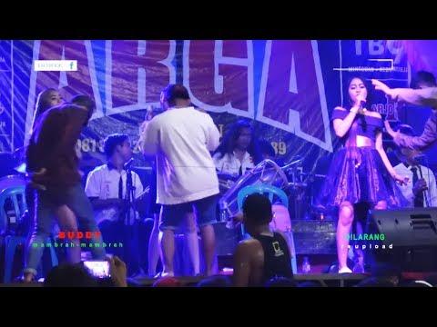 Novi Gingsul - Bojo Loro - ARGA Entertainment LIVE Desa Jatisari KEDUNGREJA Cilacap
