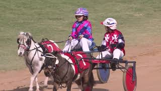 Pony Trots | 2019 Royal Adelaide Show