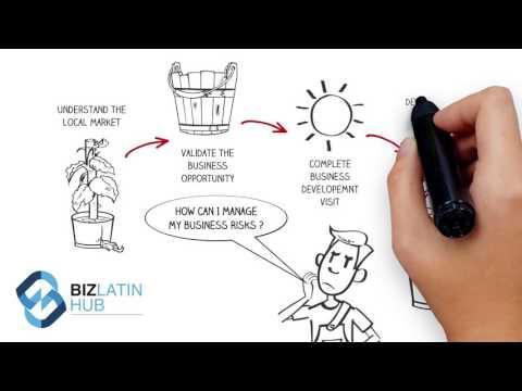 Market Entry Services - Latin America - Biz Latin Hub
