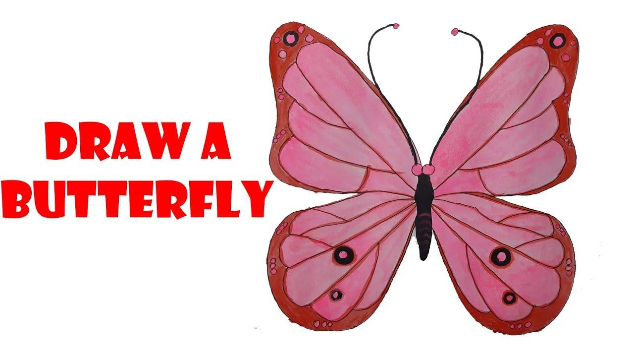 vẽ con bướm |hướng dẫn vẽ con bướm |draw a butterfly