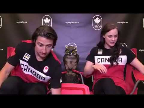 Tessa Virtue and Scott Moir Facebook Live - Olympic winners