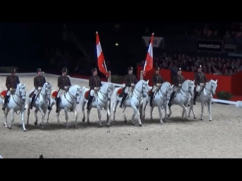 Spanish riding School of Vienna Horses Airs Above the Ground at Wembley Arena