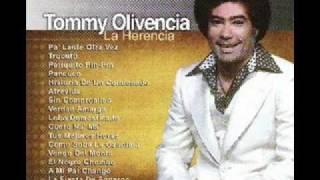 Lobo Domesticado Tommy Olivencia
