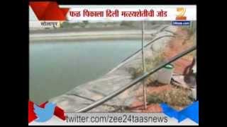 Zee24Taas | fishing in farm pond