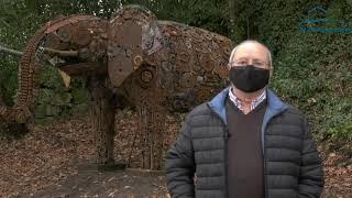 Un elefante de dúas toneladas é a última obra de Bernardo Seoane