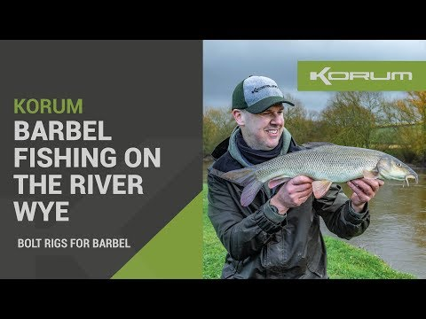 Barbel Fishing On The River Wye - Bolt Rigs For Barbel