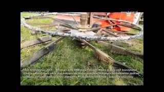 Kombajn do zbioru orzechów Jolly 1800 w akcji