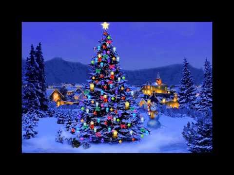 i´m-the-happiest-christmas-tree