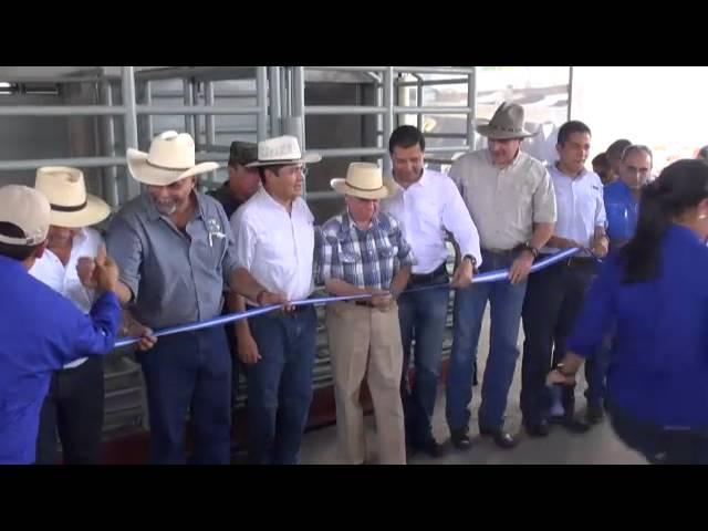 Inauguración del Primer Centro Especializado de Subastas de Ganado.