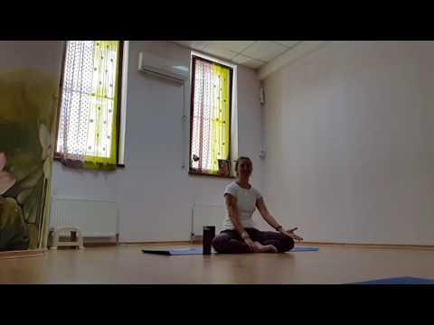 Хатха-йога — Википедия