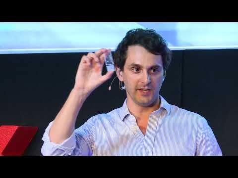 Why our grandchildren won't know animal testing | Manfredi San Germano | TEDxGoodenoughCollege