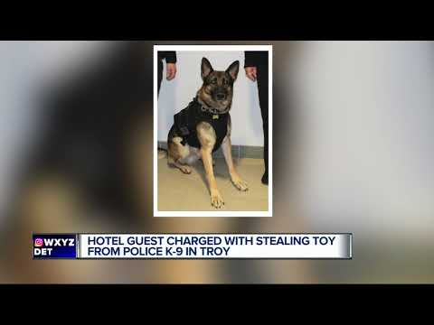 Man accused of stealing Troy Police K9's dog toy during training