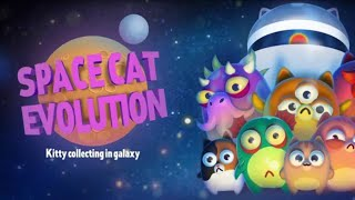 Space Cat Evolution: Kitty collecting in galaxy