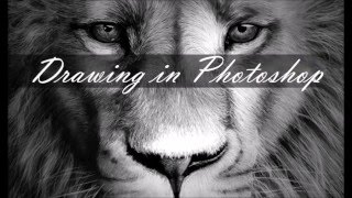 Photoshop Drawing - Lion Aslan