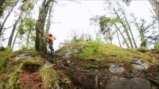 Xc? Trail? All Mountain? Mountain Bike!!!!!!