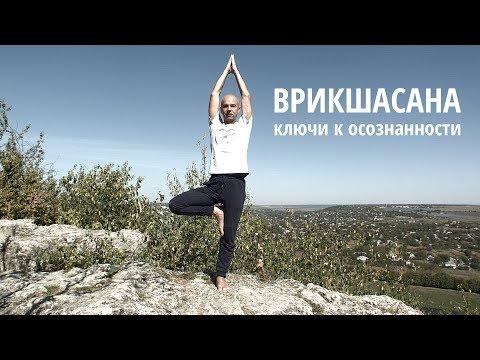 Вопрос: Как сделать позу дерева в йоге?