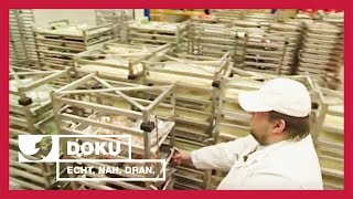 Neues aus der Großküche | Experience - Die Reportage | kabel eins Doku