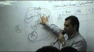 Dr.Ahmed Abd El-Rahman - Hormones 4 - TopicCorticosteroids - Part 2