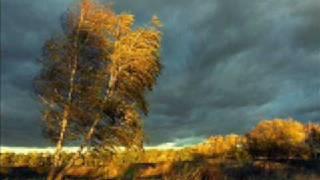 Blumfeld - Der Wind