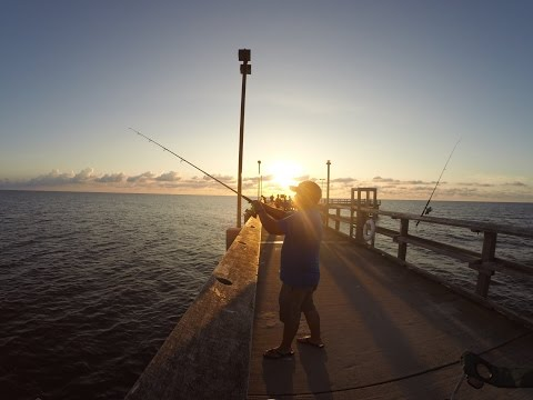 Point lookout state park reviews tips activities park for Point lookout fishing