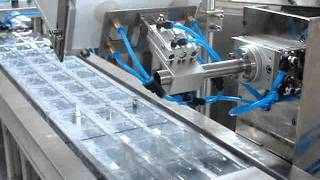 DPP-250M Paper Plastic Packing Machine