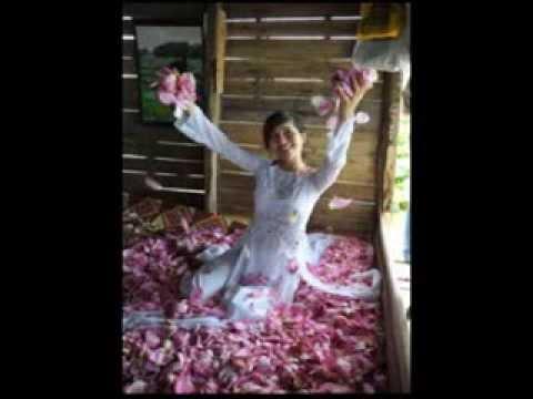 that tha hu - Thiếu nữ - áo yếm và hoa sen