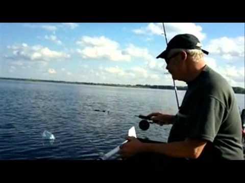 ловить судака на волге в отвес с лодки
