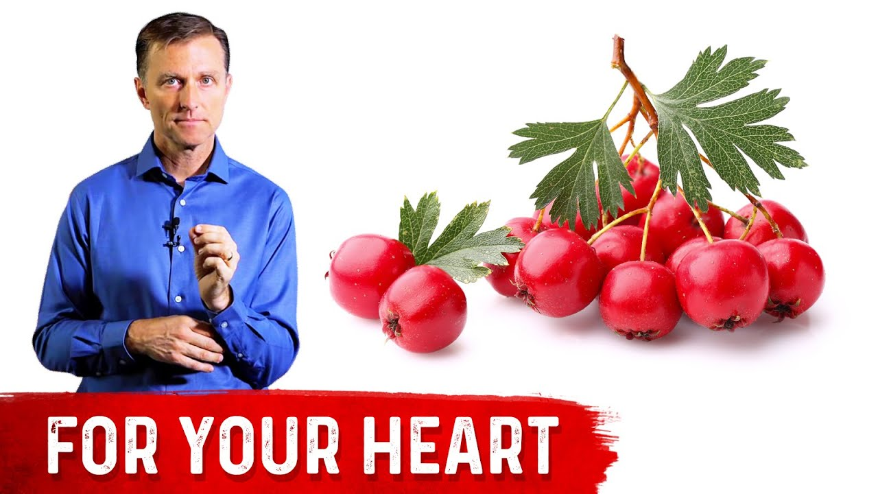 The Benefits of Hawthorn Berry